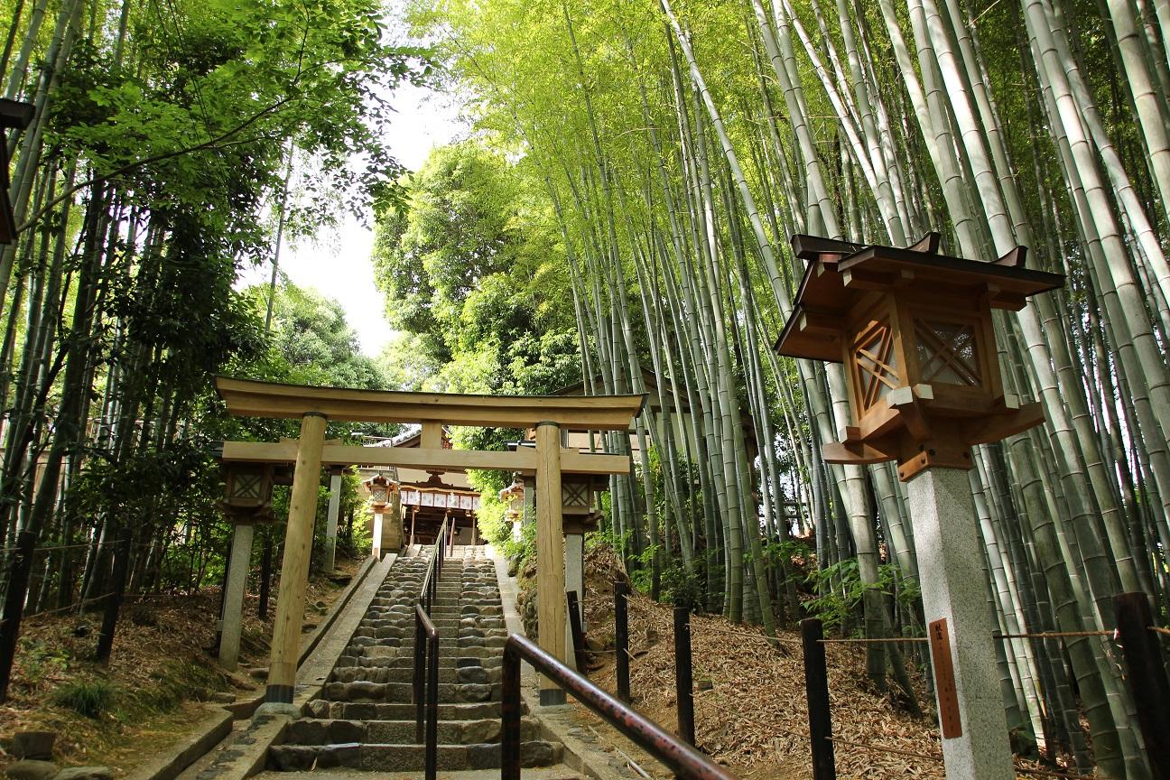 久延彦神社(奈良) 受験合格・学業向上の霊験あらたかな神様【御朱印】