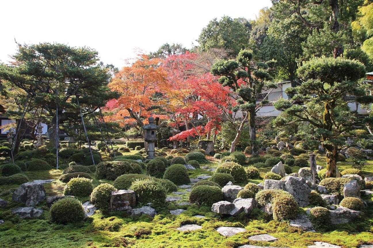 天野山金剛寺① 紅葉が美しい弘法大師が修行された霊蹟