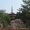 醍醐寺② 堂宇が立ち並ぶ下醍醐の伽藍【御朱印】