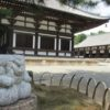 唐招提寺(奈良) 蓮の花を巡るロータスロードとうちわまき【御朱印】