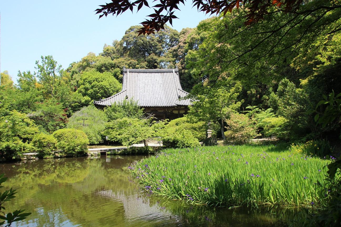 長岳寺 つつじが美しい奈良の古刹【御朱印】