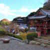 當麻寺奥院 紅葉が美しい浄土庭園と素敵な御朱印帳【御朱印】