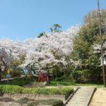 野中神社(藤井寺市) 野中宮山古墳の頂に鎮座される神様