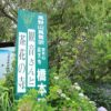 高天寺橋本院(御所市) 葛城古道を歩いて紫陽花を見に行ってきました♪【御朱印】