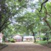 治田神社(奈良) 岡寺の伽藍跡に建つ鎮守神を祀る古社